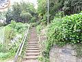 上永谷緑地 4...