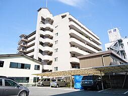 滋賀県彦根市大東町の賃貸マンションの外観