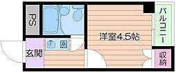 大阪府大阪市阿倍野区帝塚山1丁目の賃貸マンションの間取り