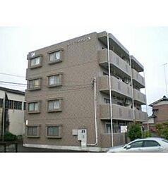栃木県栃木市平柳町1丁目の賃貸マンションの外観