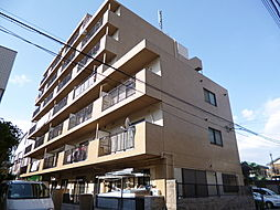 サンエイドA[7階]の外観