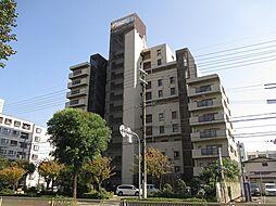 北淀宝ハイツカトレア[9階]の外観
