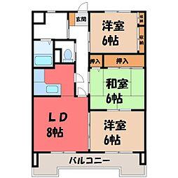 栃木県宇都宮市栄町の賃貸マンションの間取り