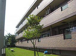 愛知県一宮市奥町字風田の賃貸マンションの外観