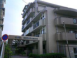 ビブレマンション生の松原[4階]の外観