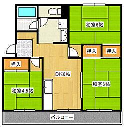 中野島住宅[5階]の間取り
