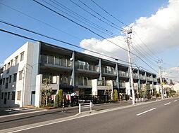 稲毛駅 11.5万円