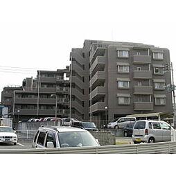 ピィアセレ高宮[701号室]の外観