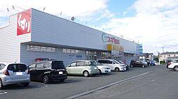 スギ薬局飯村店 1127m