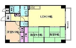 ドミールCS 2階3LDKの間取り