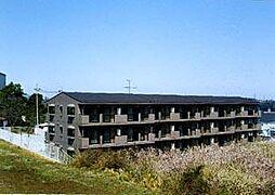 岩澤マンション[1階]の外観