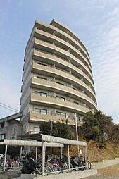 セラヴィ坂崎[3階]の外観