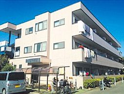 神奈川県高座郡寒川町一之宮9丁目の賃貸マンションの外観