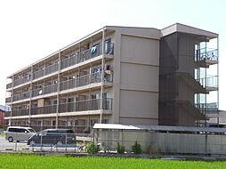 パインリーフ栗東[1階]の外観