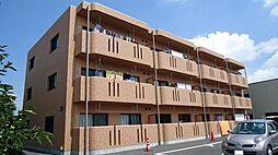 桜ユーミーマンション[203号室]の外観