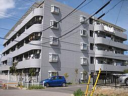 コリーナ柏井[105号室]の外観