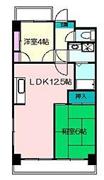 アメニティーヴィラ横浜[202号室]の間取り