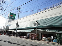 埼玉県さいたま市見沼区大字東門前の賃貸アパートの外観