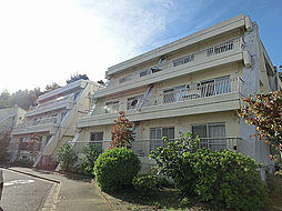 神奈川県川崎市多摩区栗谷4丁目の賃貸マンションの外観