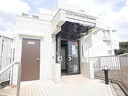 神奈川県座間市南栗原6の賃貸マンションの外観