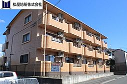 愛知県豊橋市飯村南4丁目の賃貸マンションの外観