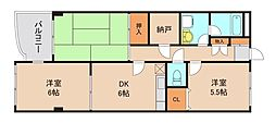 千葉県市川市末広2丁目の賃貸マンションの間取り