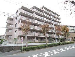 京王相模原線 稲城駅 徒歩3分の賃貸マンション