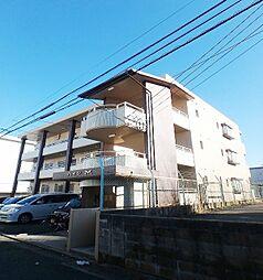 福岡県福岡市城南区樋井川3丁目の賃貸マンションの外観
