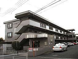 JR五日市線 秋川駅 徒歩7分の賃貸マンション