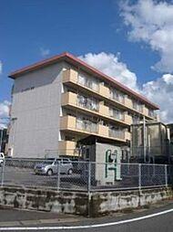 コーポラス松島[402号室]の外観