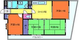 兵庫県神戸市灘区高羽町2丁目の賃貸マンションの間取り