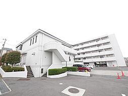 神奈川県綾瀬市寺尾中3丁目の賃貸マンションの外観