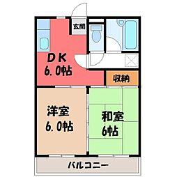 栃木県宇都宮市若松原1の賃貸マンションの間取り