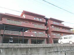 ロイヤルヒルズ561[2階]の外観