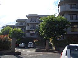 ラ・プリマヴェーラ[E-202/E-402号室]の外観