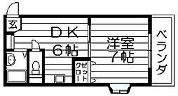 アベニューリップル吉田 島之内2 吉田3分[5階]の間取り