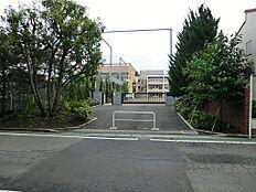 荻窪小学校(約580M)
