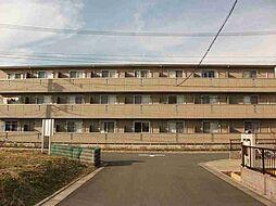 メルベーユ・ソフィア[103号室]の外観