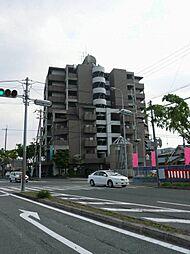 エスクドーム 島之内2 吉田9分[4階]の外観
