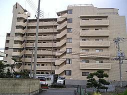 チサンマンション紀ノ川608号[6階]の外観