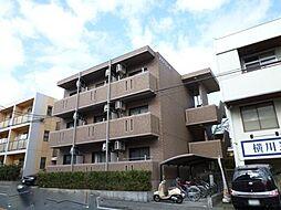 静岡県三島市文教町2丁目の賃貸マンションの外観