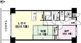 和室5.9畳 LDK約16.5畳 納戸約5.4畳