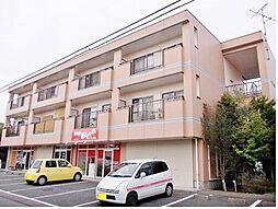 千葉県茂原市高師の賃貸マンションの外観