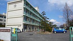篠木小学校まで600m、篠木小学校まで600m(徒歩約8分)