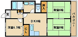 兵庫県明石市東野町の賃貸マンションの間取り