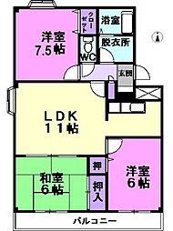 愛知県名古屋市西区五才美町の賃貸マンションの間取り