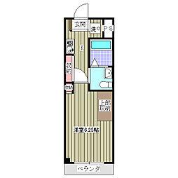 アッソルッソ 1ヶ月フリーレント付・新築マンション[1階]の間取り
