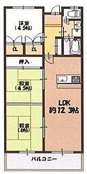 大阪府和泉市東阪本町の賃貸マンションの間取り