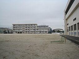 神戸中学校 1008m