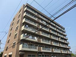 エクセレンス86[7階]の外観